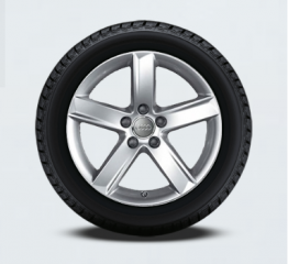 Audi A5 Winter Tire Package