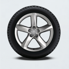 Audi A8 Winter Tire Package
